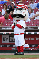 June 18, 2008: Cincinnati Reds mascot Mr. Red Legs at The Great American Ballpark in Cincinnati, OH.  Photo by: Chris Proctor/Four Seam Images