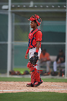 Boston Red Sox catcher Jonathan Diaz (43) during a Minor League Spring Training game against the Baltimore Orioles on March 20, 2019 at the Buck O'Neil Baseball Complex in Sarasota, Florida.  (Mike Janes/Four Seam Images)