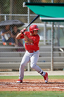 GCL Cardinals designated hitter Andres Luna (5) at bat during a game against the GCL Mets on July 23, 2017 at Roger Dean Stadium Complex in Jupiter, Florida.  GCL Cardinals defeated the GCL Mets 5-3.  (Mike Janes/Four Seam Images)