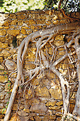 mur du bagne