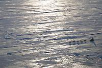 Tuesday March 13, 2007   ----   A lone team runs on the sea ice between Shaktoolik and Koyuk on Tuesday morning.