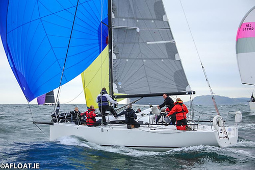 The crew of Andrew Algeo's J/99 Juggerknot 2 will include Kenneth Rumball of RL Sailing. Photo: Afloat.ie/David O'Brien