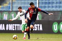 Stefano Sensi of Sassuolo , Cristian Romero of  Genoa <br /> Genova 03-02-2019 Stadio Marassi, Football Serie A 2018/2019 Genoa - Sassuolo   <br /> Foto Image Sport / Insidefoto