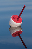 Lobster Buoy, Castine, Maine, US