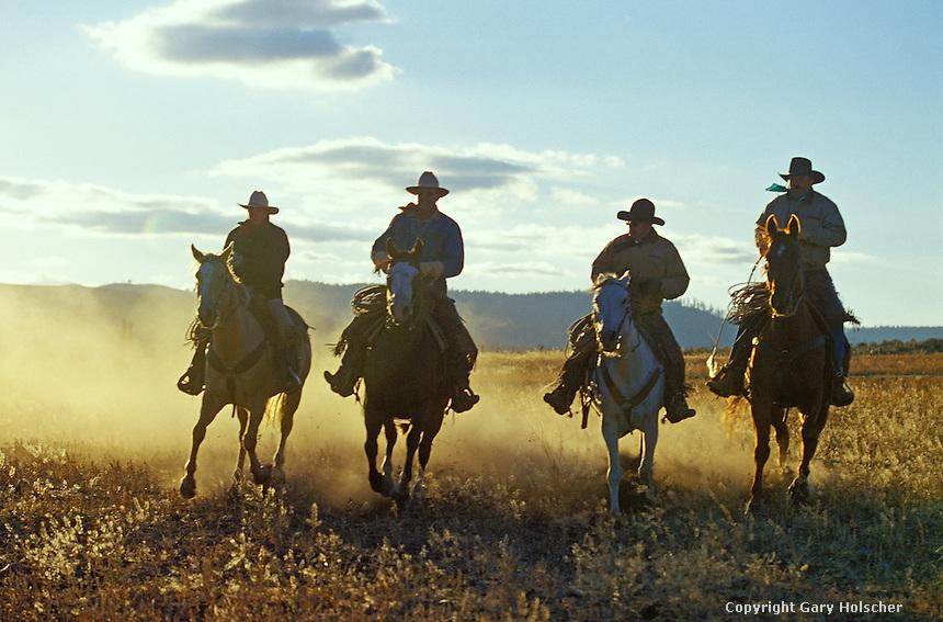 Cowboy on horses running in backlight. Ponderosa Ranch, Seneca, OR.