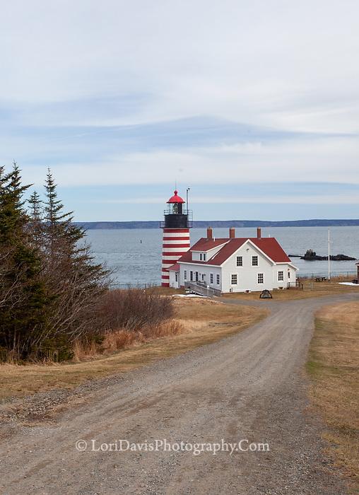 West Quoddy Light #5, Lubec, Maine