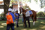 July 5, 2014: Trainer J. Larry Jones leads Coup de Grace (#3), Kerwin Clark up, in the paddock before the Oh Say Stakes, six furlongs for three-year-olds, at Delaware Park in Stanton, DE. Owner is Fox Hill Farm. ©Joan Fairman Kanes/ESW/CSM