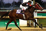 LOUISVILLE, KY -NOV 24: Hailstorm Slew (Jon Court) wins the 13th running of the Dream Supreme at Churchill Downs, Louisville, Kentucky. Owner C.R. Trout, trainer is owner C.R. Trout. By Munnings x Successful Slew, by Successful Appeal. (Photo by Mary M. Meek/Eclipse Sportswire/Getty Images)