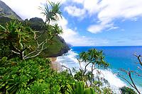 Hanakapi'ai Beach and Na Pali cliffs, with lush, tropical vegetation and the turquoise Pacific Ocean, from Kalalau Trail in Kauai Island, Hawaii