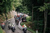 peloton up the Passo di Sant'Antonio<br /> <br /> stage 15: Tolmezzo – Sappada (176 km)<br /> 101th Giro d'Italia 2018