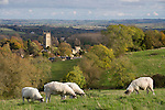 United Kingdom, England, Gloucestershire, Cotswolds, Chipping Campden: view over town and St James Church | Grossbritannien, England, Gloucestershire, Cotswolds, Chipping Campden: mit St. James Kirche