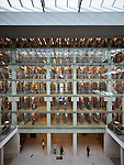 OSU William Oxley Thompson Memorial Library | Architects: Gund Partnership and Acock Associates