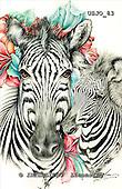 Marie, REALISTIC ANIMALS, REALISTISCHE TIERE, ANIMALES REALISTICOS, paintings+++++,USJO83,#A# ,Joan Marie, zebra