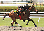 07 April 2011.  Hip #65 Tiznow - Silent Treatment filly consigned by Eddie Woods.
