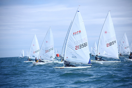 Ulster Championships Laser racing at Whitehead Yacht Club on Belfast Lough Photo: Kathryn Anderson