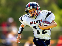 The Lake Norman Giants kicked off its second football season in late summer 2010. The boys play in the Pop Warner Little Scholars league, the only sports organization with an academic requirement. Also called Pop Warner Football, the organization operates in 43 U.S. states and several countries around the world.
