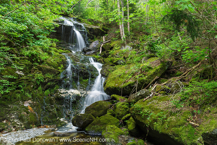 Canyon Fall along Spur Brook in Low and Burbank's Grant, New Hampshire during the summer months.
