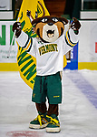 9 February 2020: University of Vermont Catamount mascot Rally Cat celebrates a Catamount win against the University of Connecticut Huskies at Gutterson Fieldhouse in Burlington, Vermont. The Lady Cats defeated the Huskies 6-2 in the second game of their weekend Hockey East series. Mandatory Credit: Ed Wolfstein Photo *** RAW (NEF) Image File Available ***