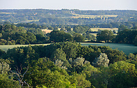 GERMANY, Teterow, pasture, fields and forest / Felder und Wald, Laubwald, Landschaftsschutzgebiet Saechsische Schweiz