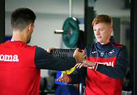 Federico Fernandez and Sam Clucas exercise in the gym during the Swansea City Training and Press Conference at The Fairwood Training Ground, Swansea, Wales, UK. Thursday 24 August 2017
