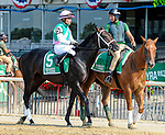 July 5, 2021: Snow House, ridden by Joel Rosario, during the post parade prior to the 2021 running of the G3 Dwyer S. at Belmont Park in Elmont, NY. Sophie Shore/ESW/CSM