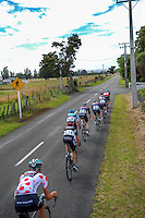 Riders start down West Bush Rd during stage five of the NZ Cycle Classic UCI Oceania Tour in Masterton, New Zealand on Tuesday, 26 January 2017. Photo: Dave Lintott / lintottphoto.co.nz