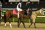 April 25, 2015 Churchill Downs Opening Night.  Henry Jones in the post parade of the William Walker Stakes.  Jockey James Graham, owner Holy Cow Stable LLC, trainer D. Wayne Lukas.  By Temple City x Gold Bowl (Seeking the Gold).  He finished 4th to Cinco Charlie.  ©Mary M. Meek/ESW/CSM