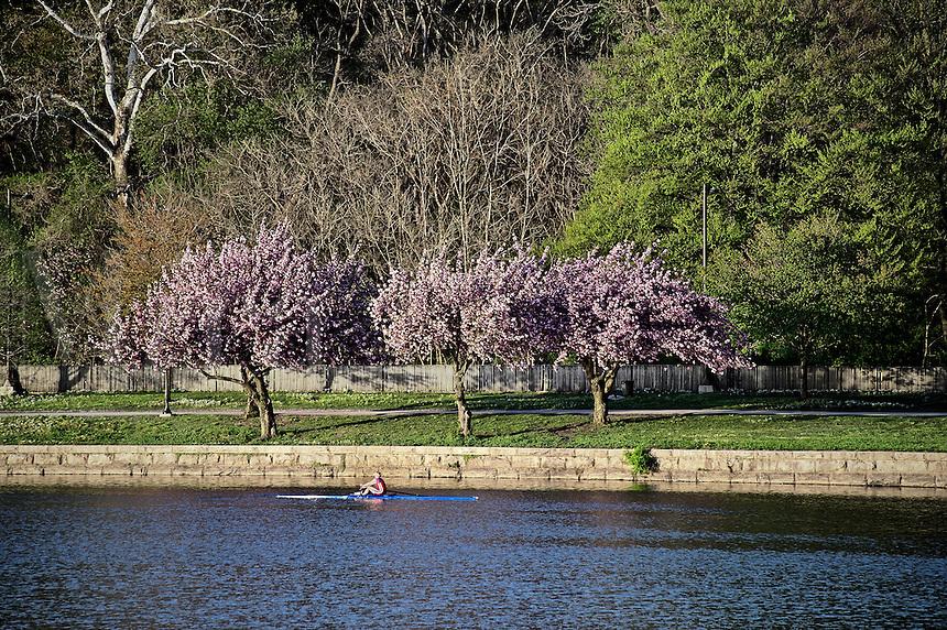 Rowing along the Schuylkill River, Philadelphia, Pennsylvania
