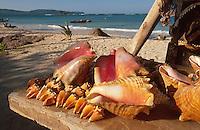 Dominikanische Republik, Playa Las Galeras auf der Samana-Halbinsel, Verkauf von Souvenirs