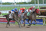 HALLANDALE BEACH, FL -DECEMBER 03:   #5 Tormenta de Oro (FL) with jockey Luca Panici on board, wins the $110K  Claiming Crown Glass Slipper Stakes  at Gulfstream Park on December 03, 2016 in Hallandale Beach, Florida. (Photo by Liz Lamont/Eclipse Sportswire/Getty Images)