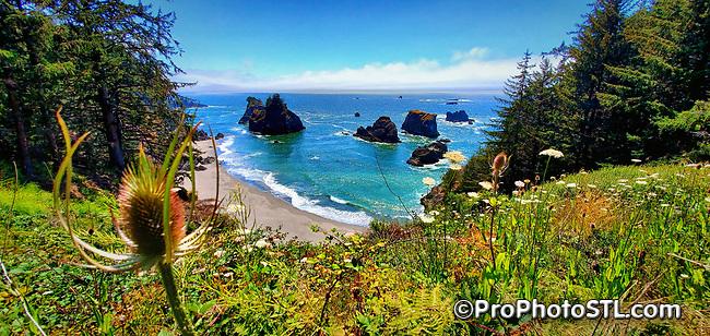 The beauty of Oregon