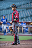 Arizona Diamondbacks catcher Andy Yerzy (27) during an Instructional League game against the Kansas City Royals at Chase Field on October 14, 2017 in Phoenix, Arizona. (Zachary Lucy/Four Seam Images)