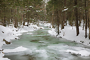Twin Brook, near Champney Falls Trail, in Albany, New Hampshire USA during the winter months.