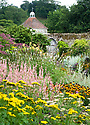 The Gold Border at Parham House, mid August. Plants include Helenium 'Moerheim Beauty', Helenium 'Riverton Beauty', Achillea, Persicaria.