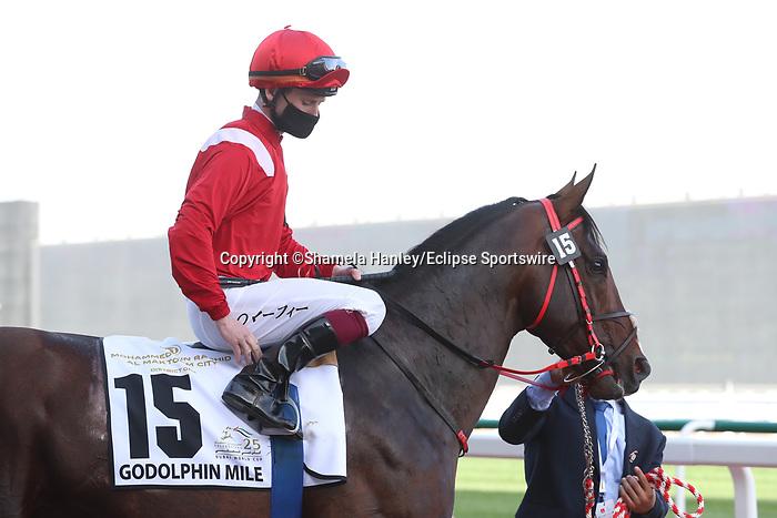 March 27, 2021: URBAN ICON (GB) #15 in the post parade for the Godolphin Mile on Dubai World Cup Day, Meydan Racecourse, Dubai, UAE. Shamela Hanley/Eclipse Sportswire/CSM