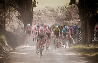 Tosh Van der Sande (BEL/Lotto-Soudal) crashes in a corner just as his teammates up the tempo at the front<br /> <br /> 13th Strade Bianche 2019 (1.UWT)<br /> One day race from Siena to Siena (184km)<br /> <br /> ©kramon
