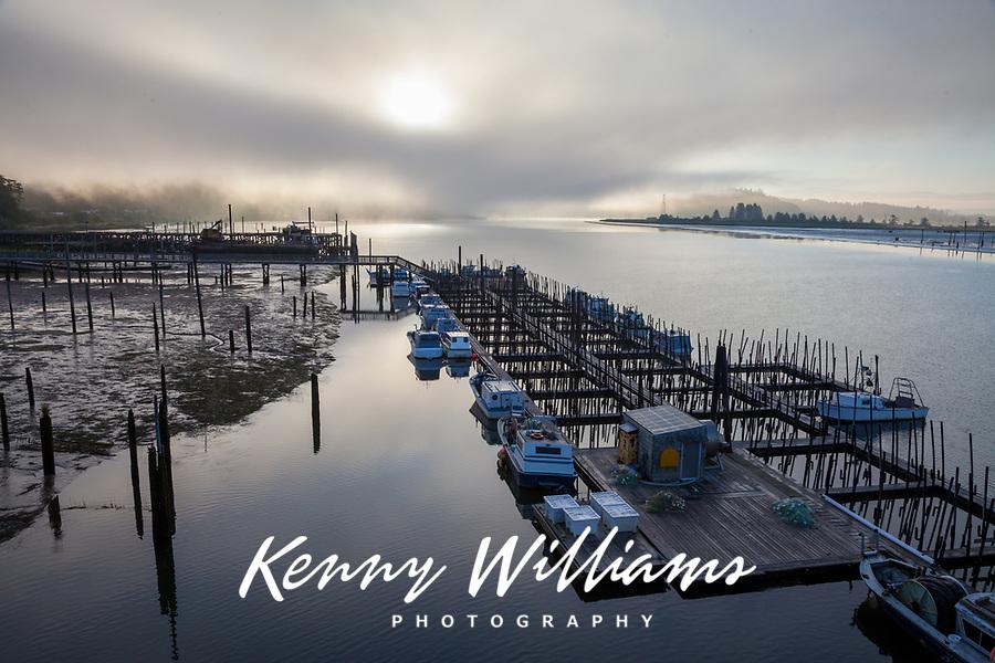 Fishing Boats & Floating Fish Farm in Fog at Sunrise, Astoria Marina, Oregon, USA