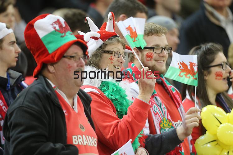 Patriotic Welsh rugby fans.<br /> RBS 6 Nations 2014<br /> Wales v Scotland<br /> Millennium Stadium<br /> <br /> 15.03.14<br /> <br /> ©Steve Pope-SPORTINGWALES