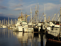 Commerical fishing boats docked in Santa Barbara harbor