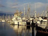 Commerical fishing boats docked in Santa Barbara harbor