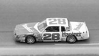 Cale Yarborough 28 action Firecracker 400 at Daytona International Speedway in Daytona Beach, FL on July 4, 1983. (Photo by Brian Cleary/www.bcpix.com)