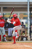 Philadelphia Phillies Johan Rojas (33) at bat during an Instructional League game against the Detroit Tigers on September 19, 2019 at Tigertown in Lakeland, Florida.  (Mike Janes/Four Seam Images)