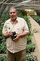 EGYPT, Ismallia , Sarapium forest in the desert, the trees are irrigated by treated sewage water from Ismalia, tree nursery / AEGYPTEN, Ismailia, Sarapium Forstprojekt in der Wueste, die Baeume werden mit geklaertem Abwasser der Stadt Ismalia bewaessert, Baumschule, Hossam Hammad, Professor der Landwirtschaftlichen Fakultät der Ain Shams University in Kairo