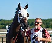 9th Gallant Bob Stakes - King Jack