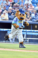 Asheville Hippies mascot Ted E Tourist (00) rounds the bases between innings during a game against the Greenville Drive at McCormick Field on June 29, 2017 in Asheville, North Carolina. The Drive defeated the Tourists 9-6. (Tony Farlow/Four Seam Images)