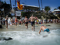 September 6 2008, La Jolla California.  Scenes from the water during the 78th annual La Jolla Rough Water Swim