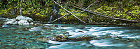 Moss river bank of turquoise Routeburn river with waterfall, Mount Aspiring National Park, UNESCO World Heritage Area, Central Otago, New Zealand, NZ