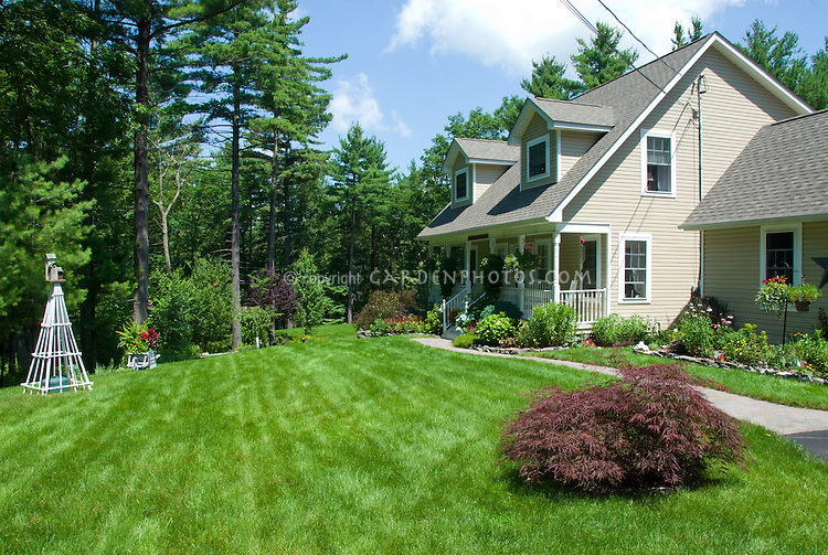 House and lovely lawn landscaping, blue sky and clouds on a summer sunny day, Japanese maple tree Acer palmatum, curb appeal, Milford, PA
