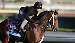 I'm Boundtoscore, trained by Troy Rankin, exercises in preparation for the upcoming Breeders Cup at Santa Anita Park on October 30, 2012.