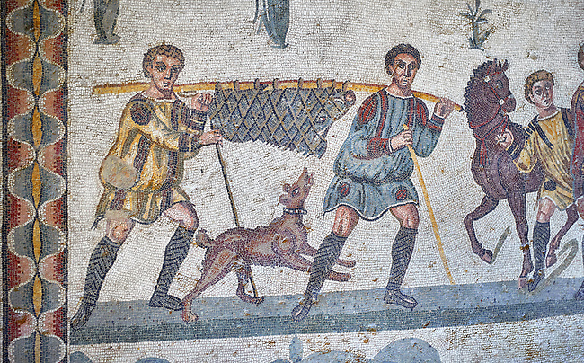 Close up detail picture of the Roman mosaics of the small hunt depicting a dead boar being carried by hunters, room no 24 at the Villa Romana del Casale, first quarter of the 4th century AD. Sicily, Italy. A UNESCO World Heritage Site.<br /> <br /> The Small Hunt room was used as a living room for guests of the Villa Romana del Casale. The Small hunt mosaic design has 4 registers running across the mosaic depicting hunting scenes. In the first register two servants are handling hunting dogs. In the second register figures are depicted burning incense at an altar to Diana, the goddess of hunting, before the hunt starts. The offering is being made by Constantius Clorus , the Caesar of Emperor Maximianus who owned the Villa Romana del Casale. Behind him is his son the future Emperor Constantine. To the right of the altar is a figure holding the reins of a horse dressed in a clavi decorated with ivy leaves indicating that he belongs to the family of Maximianus.